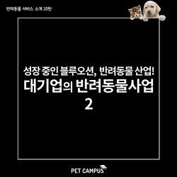 [펫캠퍼스] 블루오션 반려동물 산업, 대기업의 반려동물 사업 2탄