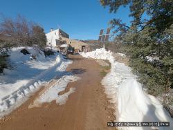 눈 오는 날 여행 시작, 일주일 후 돌아와 보니... 스페인 폭설 강타한 우리 집
