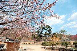 봄 봄 봄