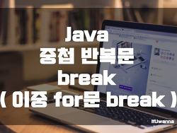 [Java] 중첩 반복문 break ( 이중 for문 break )