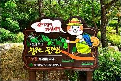 팔공산 둘레길 1코스 ( 갓바위 만남의 광장-백안동 팔공문화원 )