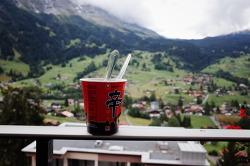 취리히에서 인터라켄가기 - 그린델발트 벨베데레 호텔 Belvedere Swiss Quality Hotel