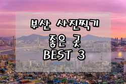 [부산] 부산 사람이 알려주는 사진찍기 좋은 곳 BEST 3