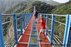 [한국 여행기-06] 가을에 가면 더 좋았을 여름의 소금산 출렁다리