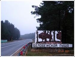 Belovezhskaya Pushcha National Park 2