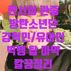 한서희/방탄소년단/강혁민/마약/위대한탄생/빅뱅탑