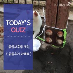 [펫캠퍼스] 반려동물 유기시 최대로 부과될 수 있는 과태료는?