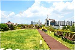 대구 서구청 옥상 생태공원