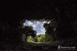 천연동굴의 신비, 제주도 숨은 명소 녹차동굴