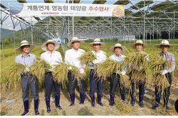 농사와 태양광발전의 공존시대 개막. 남동발전 국내최초 영농형 태양광발전 작물수확