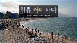 [강원 강릉여행] 커피 그리고 바다 - 강릉역, 안목해변, 경포대, 사천해변 /하늘연못