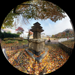 [20181107]천년역사공원 삼층석탑 보물 제5호에서 강등된 사연