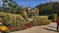 거제 섬꽃축제, 거제 식물원 정글돔(2)