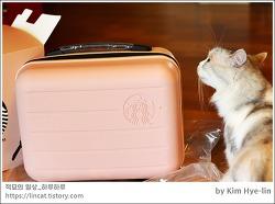 [적묘의 고양이]친구님네 고양이,스타벅스 미니 여행가방,스벅섬머레디백,언박싱,짤뱅군과 함께