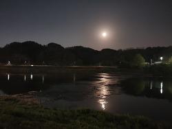 겔럭시 10S+ 야간모드 사진촬영