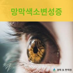 망막색소변성증 원인과 당뇨병성망막병증