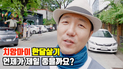 🇹🇭치앙마이 한달살기 | 1년 중 제일 좋은시기 추천 (feat.빠이와 매홍손 포함)