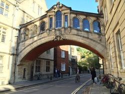영국 옥스퍼드 대학교: 특징과 한국학생 비중