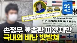 손정우 미국 안 보내서 성범죄 처벌 막았다?