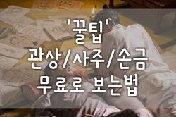 꿀팁 무료관상/무료사주팔자/무료운세/무료손금 보기 방법과 후기!