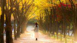 가을의 아름다운 여인들