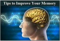 기억력 향상 습관 5가지