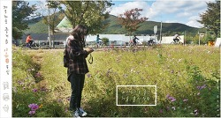 코스모스 피어있는 길목 - 물의 정원④