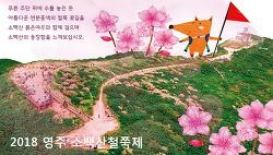 영주 소백산철쭉제, 붉은여우의 소백산 꽃놀이