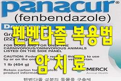 펜벤다졸 복용법 암치료