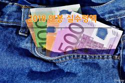 2018 연봉 실수령액