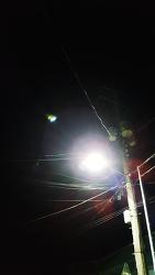 불빛에 거미줄 안전할까?