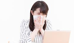 환절기 비염, 일본에서 팔리는 상품
