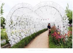 로맨틱한 하트 터널과 I ♥ YOU 하트 조명 터널 - 파주 퍼스트가든