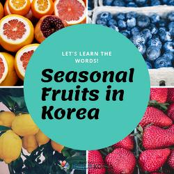 [Korean Class] Seasonal Fruits in Korea