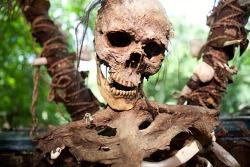 [좀비 다이어트] 인간을 육식한 실제 10가지 사례들 VIDEO: Zombie diet: 10 real-life examples of humans eating humans