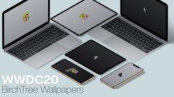 아이폰 아이패드 Mac을 위한 WWDC 2020 월페이퍼