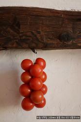 1년 내내 상온 보관 가능한 스페인 토마토