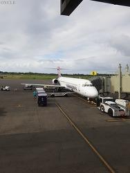HA291 ITO-HNL 하와이/힐로-하와이/호놀룰루 하와이안항공 주내선 이코노미 탑승기