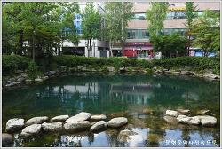 강원 태백 황지연못