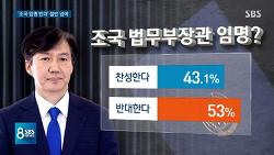 sbs 조국 법무장관 임명 찬성 43.1% vs 반대 53%, 문재인 이탈자 29.6%