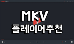 mkv 플레이어 추천 - 1그램 플레이어