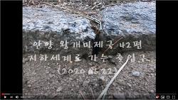 [영상]안양 왕개미제국 42편 -지하세계로 가는 출입구(2020.06.22)