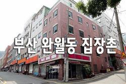 부산 완월동 집장촌 영상