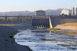 BTS 최신 뮤직비디오를 찍은 곳인 우리 동네 세풀베다댐(Sepulveda Dam)과 야생동물 보호지 산책