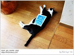[적묘의 고양이]16살고양이,아이스팩재활용,노묘,철푸덕,할묘니,고양이 안죽었어요