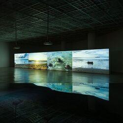 남화연,  《마음의 흐름》에 대한 단상 : 에세이, 무빙 이미지, 노스텔지아