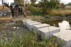 [20201027]물고기 이동 막았던 수암천 삼덕공원 돌다리 고쳐졌다.