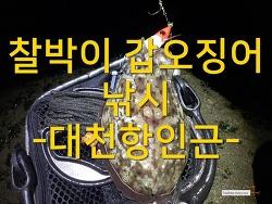 찰박이 갑오징어 낚시 - 대천항인근