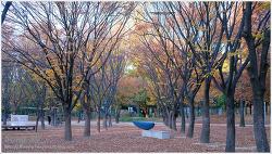 서울숲의 가을 풍경