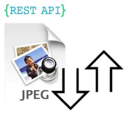 [REST API] REST 기반 파일 업로드와 다운로드 구현하기